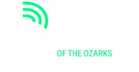Big Brothers Big Sisters of the Ozarks – Youth Mentoring